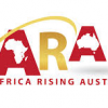 The rise of Africa and business for disapora communities