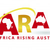 African Diaspora promoting Africa's business opportunities to international investors