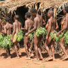 Pygmies in DRC go on rampage