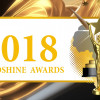 Afroshine Australia Awards: over 30 people awarded for their good work in the community